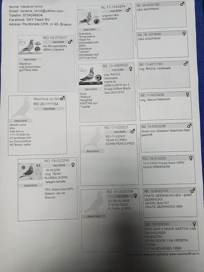 RO 20-111154