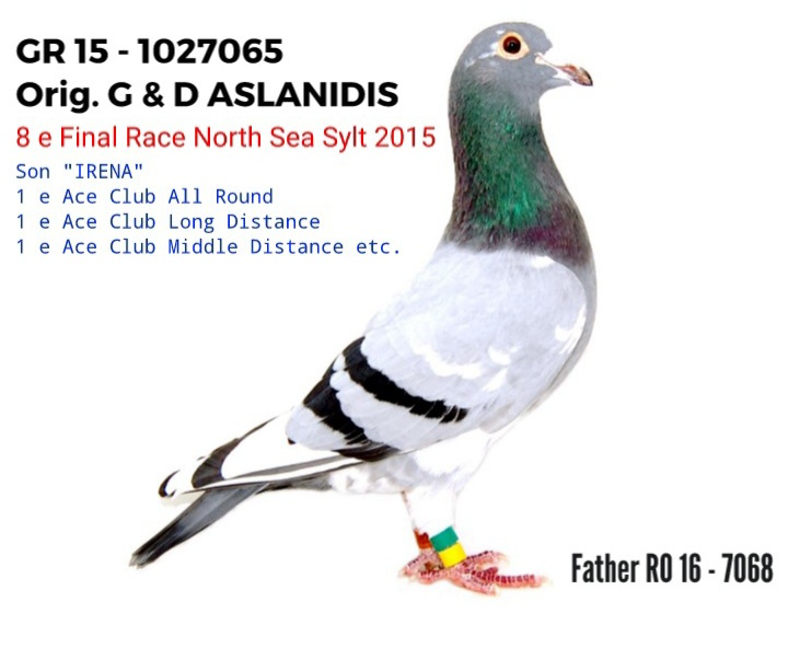 RO 16-7068